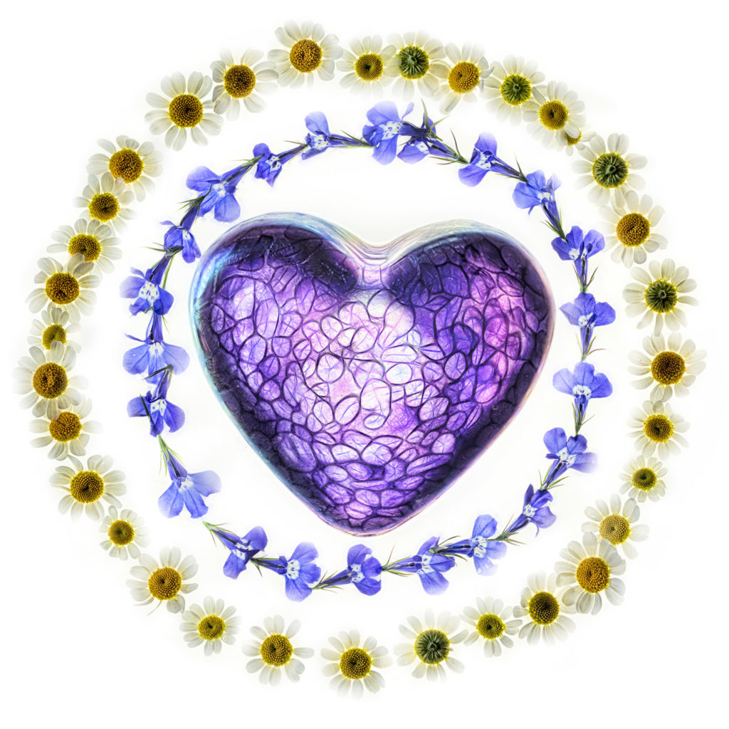 Heart Ringed with Flowers © Harold Davis